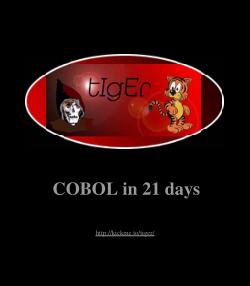 Teach Yourself Cobol In 21 Days 2nd edition PDF