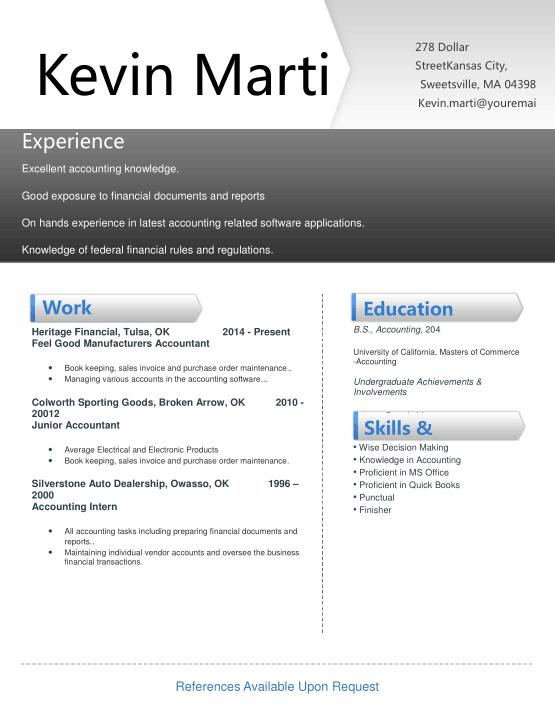 Free Download PDF Books, Creative Accountant Resume Template Word | PDF