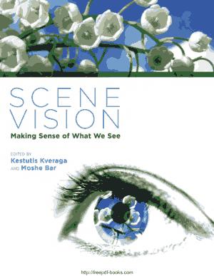 Scene Vision- Making Sense of What We See