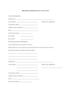 Prenuptial Agreement Financial Disclosure Form Template