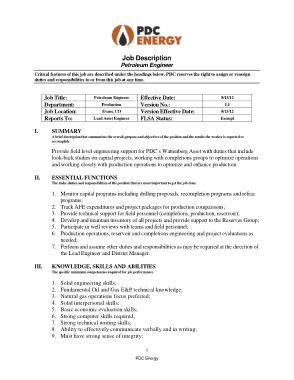 Free Download PDF Books, Professional Petroleum Engineer Job Description Template