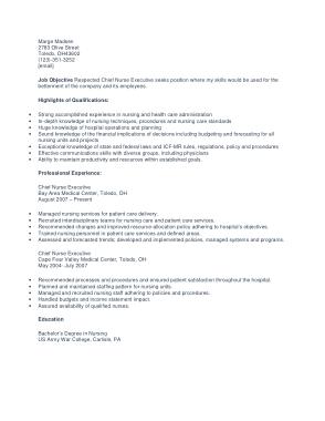 Free Download PDF Books, Chief Nurse Executive Template