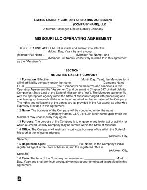 Free Download PDF Books, Missouri Multi Member LLC Operating Agreement Form Template