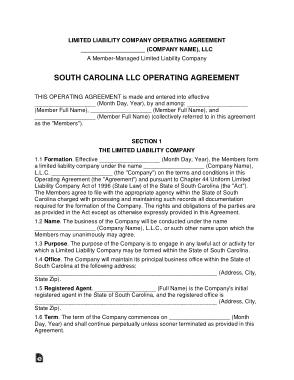 Free Download PDF Books, South Carolina Multi Member LLC Operating Agreement Form Template