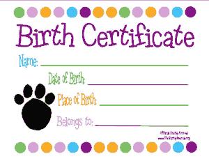 Free Download PDF Books, Birth Certificate Simple Template