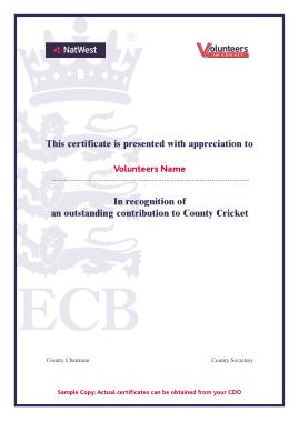 Free Download PDF Books, Cricket Volunteer Certificate Template