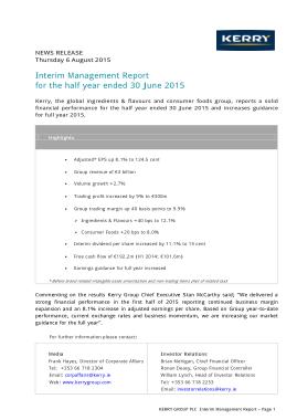 Free Download PDF Books, Interim Management Report Template