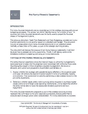 Proforma Financial Statement Template
