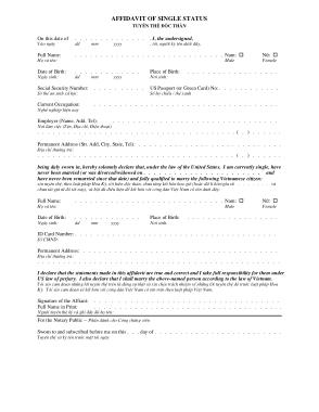 Free Download PDF Books, Basic Affidavit of Single Status Template