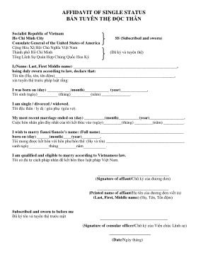 Printable Affidavit of Single Status Template