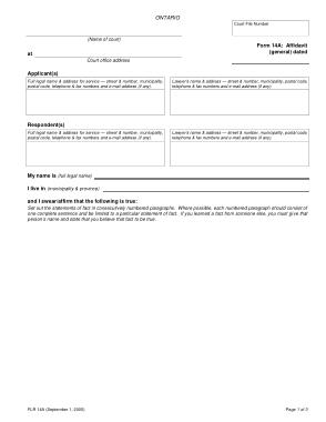 Free Download PDF Books, General Affidavit Statement Form Template