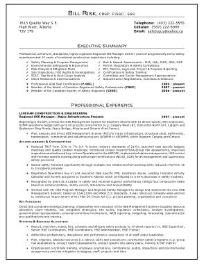 Free Download PDF Books, Resume Executive Summary Sample Template