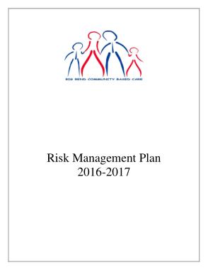 General Child Care Risk Management Plan Sample Template