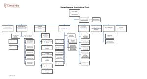 Human Resources Organizational Chart Free Template