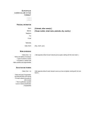 Free Download PDF Books, European Curriculum Vitae Format CV Template