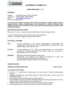 Free Download PDF Books, IT Sample CV Template