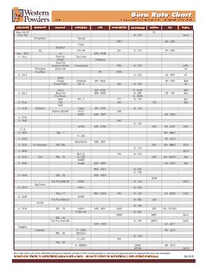 Free Download PDF Books, Burn Rate Chart Template
