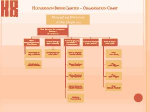 Free Download PDF Books, Business Organization Chart Template