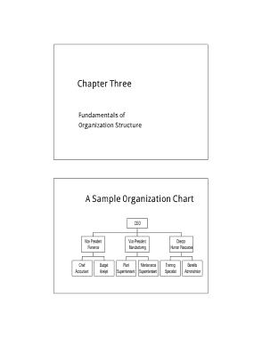 Free Download PDF Books, Basic Organization Chart Template