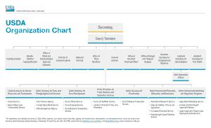 Free Download PDF Books, Basic USDA Organization Chart Template