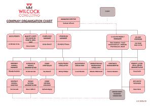 Free Download PDF Books, Company Organization Chart Template