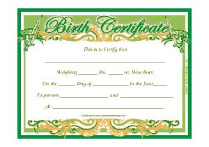 Free Download PDF Books, New Born Baby Birth Certificate Template